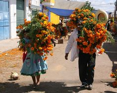 Oaxaca Day of the Death Festivities