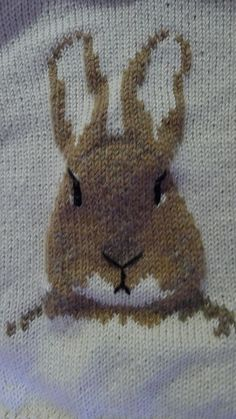 Ravelry: Peter Rabbit pattern by Pat Menchini – Obviously it's free but I hat to join every f*cking page to get something! >:-@: