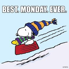 Snoopy and Woodstock Wearing Winter Hats and Sledding Down the Hill in Snoopy's Dog Dish - Best Monday Ever Peanuts Gang, Charlie Brown And Snoopy, Snoopy Cartoon, Peanuts Cartoon, Snoopy Comics, Cartoon Character Pictures, Cartoon Characters, Peanuts Characters, Fictional Characters