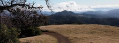 Sugarloaf Ridge in Kenwood (Sonoma County) is one of our favorite spots!