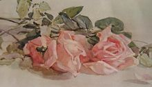 Antique 1912 PINK ROSES Print Rhoda Holmes Nicholls from Victorian Rose Prints exclusively on Ruby Lane!