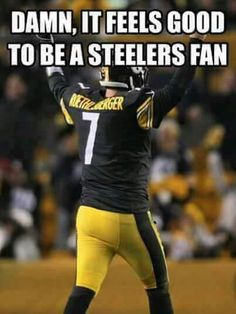 I Love The Steelers!!!