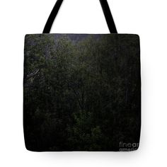 Dark Forest Rain Tote Bag by Sverre Andreas Fekjan. The tote bag is machine washable, available in three different sizes, and includes a black strap for… Forest Rain, Dark Forest, Bag Sale, Reusable Tote Bags, Shoulder, Shopping, Black, Art, Black People