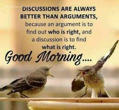 Are you looking for inspiration for good morning funny?Check this out for unique good morning funny inspiration. These entertaining quotes will make you happy. Good Morning Tuesday, Good Morning Funny, Good Morning Messages, Good Morning Good Night, Good Morning Wishes, Night Wishes, Mrng Wishes, Funny Wishes, Morning Prayer Quotes