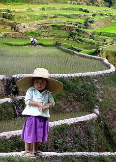 Small girl on the rice terraces in the Philippines~ The terraces are one of the wonders of the World. We Are The World, Small World, People Around The World, Wonders Of The World, Around The Worlds, Cebu, Precious Children, Beautiful Children, Beautiful People