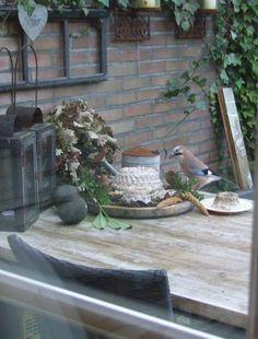 vogeltaart ... Bird Cakes, Back Patio, Little Birds, Patio Ideas, Ivy, Porch, Cupcakes, Cottage, Gardening