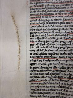 This parchment has been repaired by sewing up the hole using plain thread. From the length of the stitching, the original tear seems to have been quite substantial. Image by Megan Mulder, copyright of ZSR Library, Wake Forest University, reutilisation rights were not specified on the website