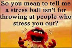 Well It SHOUL BE, LOL!!!