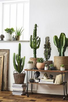 30 Best Creative Cactus Decorations to Beautify Your Home Cactus is a type of plant that is able to live in hot, dry and lacking water conditions. The original cactus h Deco Cactus, Cactus Cactus, Cactus Planters, Cactus Garden Ideas, Cactus Flower, Decoration Cactus, Low Maintenance Indoor Plants, Hvac Maintenance, Cactus E Suculentas