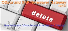 OData and SAP Netweaver Gateway. How to Delete OData Service from Service Catalog? Editing Writing, Writing Skills, Essay Writing, Writing Tips, Computer Technology, Computer Keyboard, Sap Netweaver, Grammar And Punctuation, Feeling Helpless