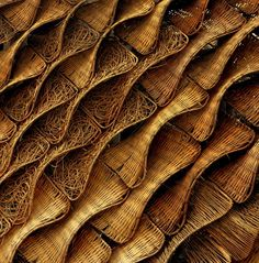 Expo - This image is a part of building skin cover of Espana Pavilion in Shanghai Expo Patterns In Nature, Shape Patterns, Textures Patterns, Building Skin, Texture Art, Texture Design, Surface Pattern, Fiber Art, Pattern Design