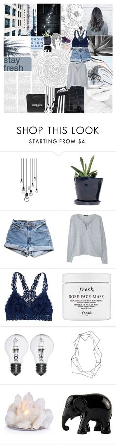 """""""LIKE TO BE ON MY FALL TAGLIST -- WILL STARS ALIGN?"""" by vanilla-chai-tea ❤ liked on Polyvore featuring GET LOST, Dot & Bo, Chanel, Levi's, MANGO, American Eagle Outfitters, Fresh, BANCI GIOIELLI, The Elephant Family and Maison Margiela"""
