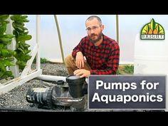 Pumps & Aquaponics or Hydroponics