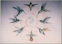 paintings of hummingbirds | My slideshows and videos feature photos of ruby-throated hummingbirds ...
