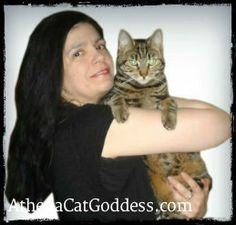 Athena, Cat Goddess: Answer Your Cat's Question Day  #cats #catblogs #catbloggers