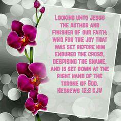 Hebrews 12:2 (KJV)