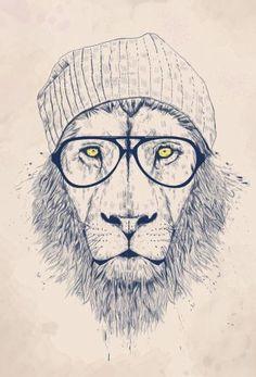 Cool lion Acrylglasbild