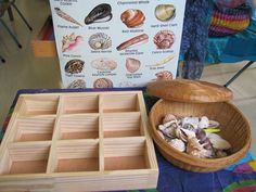 A shadow box promotes children's abilities to sort and compare objects; to develop their own sorting method. Can be used flat or in upright position.