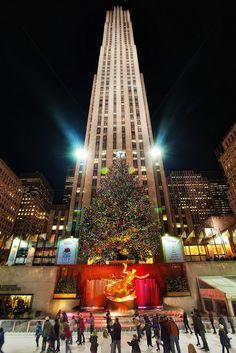'The Famous Tree' - Rockefeller Center, New York City, New York
