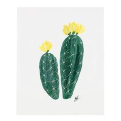 Flowering Cacti Print, Joshua Tree
