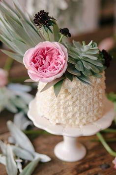 sweet little succulent cake by cakewalk bake shop with bows and arrows