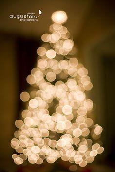 blurred light Christmas tree photo
