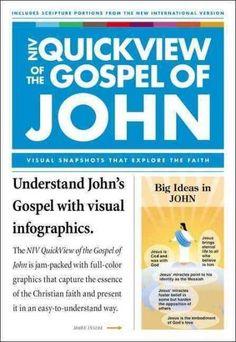 NIV Quickview of the Gospel of John: John and John 1 John