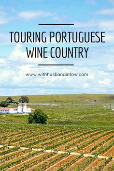 We found our way about ninety minutes outside Lisbon, on a vineyard tour in Alentejo, exploring Torre do Frade with its owner, Diogo. #Travel #Wine #Portugal