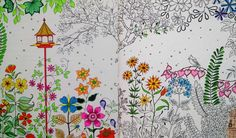 livro jardim secreto johanna basford | Jardim Secreto