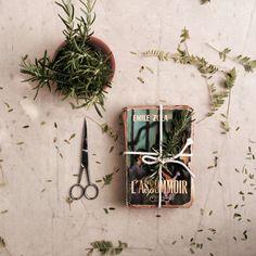 #book#old#retro#vintage#garden#rosemary