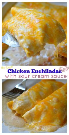 The creamy sour cream sauce for these enchiladas tops chicken, tomato, and green chile filled tortillas making a flavor that is unbelievably delicious. Creamy Chicken Enchiladas, Chicken Enchilada Casserole, Enchilada Recipes, Hamburger Casserole, Casserole Recipes, Authentic Mexican Recipes, Mexican Food Recipes, Sour Cream Chicken, Sour Cream Sauce