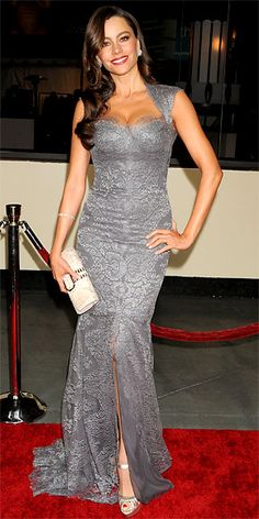 Sofia Vergara (silver lace Monique Lhuillier gown, a Jenny Packham python clutch and metallic heels)