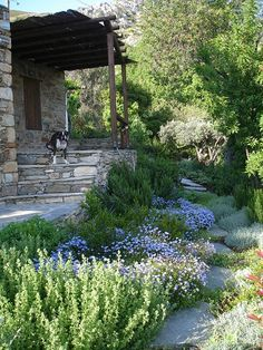 Mediterranean Garden House -- beautifully designed garden