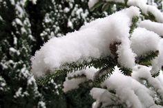 Fake snow...use kosher salt and baking soda