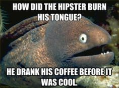 bad joke eel-ok but I thought that was hilarious.