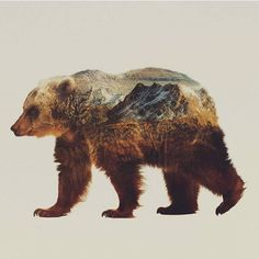 Double Exposure Animals by @artworkbylie   Shared by Kitslam YouTube