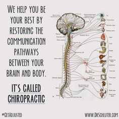 It's called Chiropractic! #getadjusted #chiropractic www.bidwell-chiropractic.com