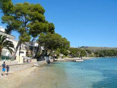 2013 Puerto Pollensa - the beautiful Pine Walks