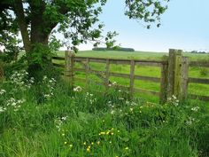 wooden gate in the fields  via thoughts… | Behind the Hedgerow