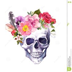Human Skull With Flowers And Feathers, Boho Style. Watercolor - Download From Over 54 Million High Quality Stock Photos, Images, Vectors. Sign up for FREE today. Image: 73145900