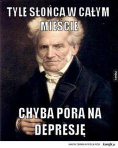 Schopenhauer vol. n-ty