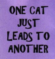 Yup......... ... Re-pinned by StoneArtUSA.com ~ affordable pet memorials since 2001