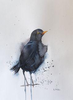 'Blackbird'An ... Watercolours, Watercolour Painting, Irish Art, Blackbird, Original Art, Birds, Animals, Blue Merle, Animaux