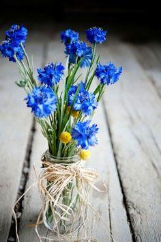 Friday Florals – Cornflowers (Centaurea Cyanus) » Alexan Events   Denver Wedding Planners, Colorado Wedding and Event Planning