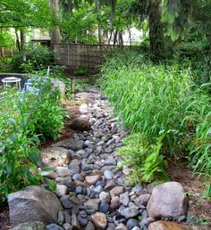 Dc Metro Bamboo Fence Remodeling Ideas Contemporary Landscape