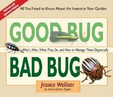Good Bug Bad Bug: Whos Who, What They Do, and How to Manage Them Organically (All you need to know about the insects in your garden)