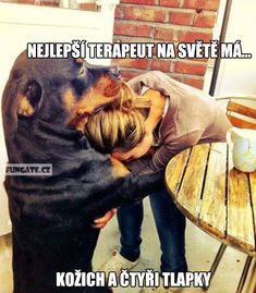 Greatest Animal Memes You Will Ever See ! Pictures) - LADnow rottweiler and pitbull, rottweiler halloween, rottweiler mix Animal Memes You Will Ever See ! Funny Dog Memes, Funny Animal Memes, Funny Dogs, Funny Animals, Cute Animals, Funny Captions, Funniest Memes, Animal Humor, Baby Animals