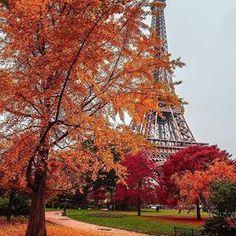 kardinalmelon: Autumn in Paris🍁💝🍂💛 mutlu haftasonlari🎈🎈 Paris Wallpaper, Fall Wallpaper, Paris Photography, Autumn Photography, Landscape Photography, Beautiful World, Beautiful Places, Paris In Autumn, Autumn Fall