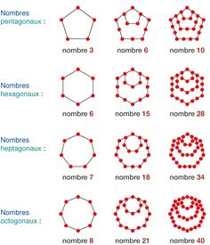 nbs polygonaux