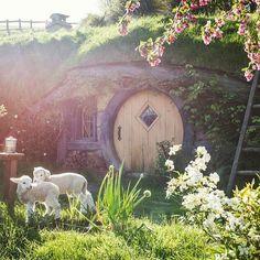 Hobbiton, New Zealand Photo by @shaun_jeffers by fantastic.colours